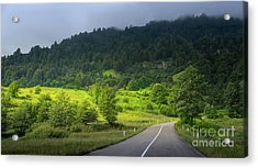 Road With A View Acrylic Print by Svetlana Sewell