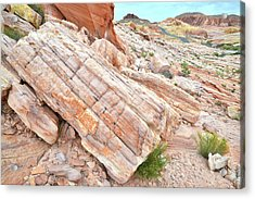 Acrylic Print featuring the photograph Roadside Sandstone In Valley Of Fire by Ray Mathis