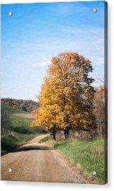 Roadside Tree In Autumn Acrylic Print