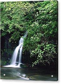 Roadside Waterfall Smoky Mountains Acrylic Print by Tony Ramos