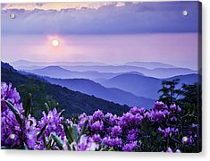 Roan Mountain Sunset Acrylic Print by Rob Travis