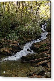 Roaring Fork Falls - October 2015 Acrylic Print by Joel Deutsch