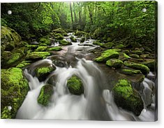 Roaring Fork Great Smoky Mountains National Park Tennessee Acrylic Print by Mark VanDyke