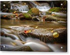 Roaring Fork Stream Great Smoky Mountains Acrylic Print by Steve Gadomski