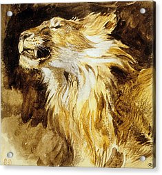 Roaring Lion Acrylic Print by Ferdinand Victor Eugene Delacroix