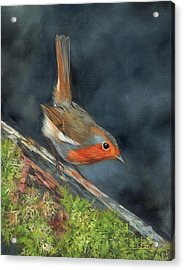 Acrylic Print featuring the painting Robin by David Stribbling