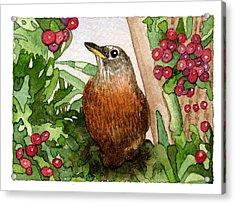 Robin Acrylic Print by Eunice Olson
