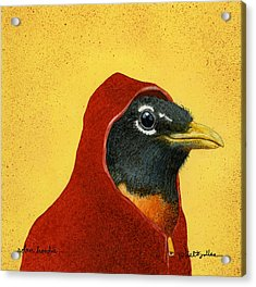 Robin Hoodie... Acrylic Print by Will Bullas