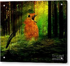 Robin In The Forest Acrylic Print