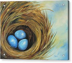Robin's Three Eggs II Acrylic Print