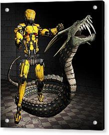 Robot Series 01 Acrylic Print