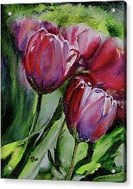 Rochelle's Springtime Tulips Acrylic Print