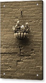 Acrylic Print featuring the photograph Rochester, New York - Wall And Flowers Sepia by Frank Romeo