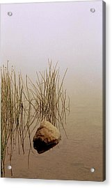 Rock And Reeds On Foggy Morning Acrylic Print