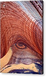Acrylic Print featuring the photograph Rock Art by Farol Tomson