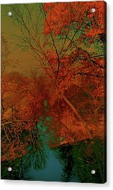 Rock Creek At M Acrylic Print