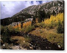 Rock Creek Fall Color Acrylic Print by Don Kreuter