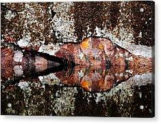 Rock Face Reflected Acrylic Print