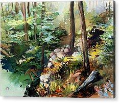 Rock Garden Acrylic Print by Shirley  Peters