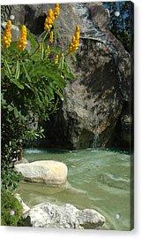 Rock Lagoon Acrylic Print by Lori Mellen-Pagliaro