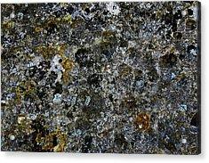 Rock Lichen Surface Acrylic Print