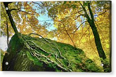 Acrylic Print featuring the photograph Rock Of Ages by Jeff Folger