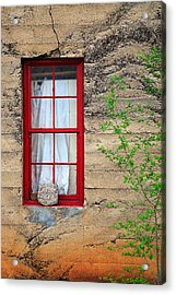 Acrylic Print featuring the photograph Rock On A Red Window by James Eddy
