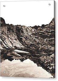 Rock - Sepia Detail Acrylic Print by Rebecca Harman