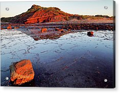 Rock Shelf At Long Reef 1 Acrylic Print