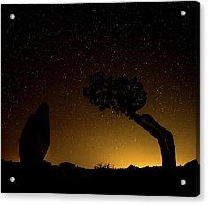 Rock, Tree, Friends Acrylic Print
