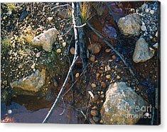 Rock Water Lake Acrylic Print by Simonne Mina