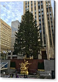 Rockefeller Center Christmas Tree Acrylic Print