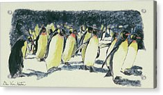 Penguin Rockhoppers Acrylic Print