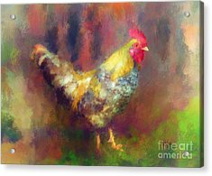 Rockin' Rooster Acrylic Print