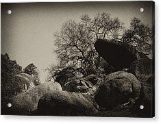 Rocks Acrylic Print by Amarildo Correa