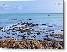 Rocks And Seaweed And Seagulls In The Irish Sea At Howth Acrylic Print by Semmick Photo