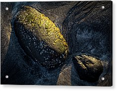 Acrylic Print featuring the photograph Rocks From Talisker Beach 1 by Davorin Mance