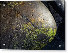 Acrylic Print featuring the photograph Rocks From Talisker Beach 3 by Davorin Mance