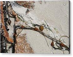 Rocks Longside Acrylic Print by Kathleen Grace