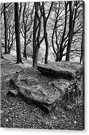 Rocks Over The Woods  Acrylic Print