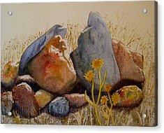 Rocks Acrylic Print by Teresa Boston