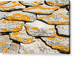 Rocks With Lichen Acrylic Print by Tom Gowanlock