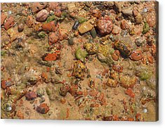 Acrylic Print featuring the photograph Rocky Beach 5 by Nicola Nobile
