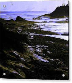Rocky Beach Acrylic Print by Shelley Bain