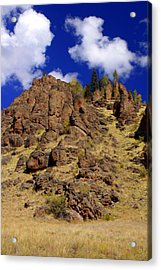 Rocky Butte Acrylic Print by Marty Koch