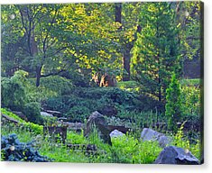 Rocky Morning Acrylic Print by Peter  McIntosh