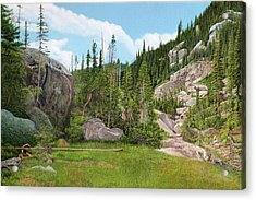 Rocky Mountain Forest Acrylic Print