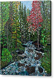 Rocky Mountain National Park 2 Acrylic Print by Micah Mullen