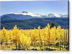 Rocky Mountain Park Colorado Acrylic Print by James Steele
