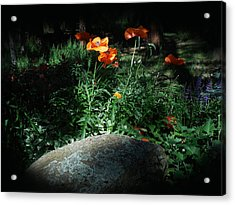 Rocky Mt. Poppies  Acrylic Print